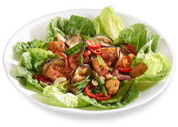 winter-2014-tofu-chilli-salad.png